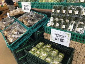 农贸市场的春山菜