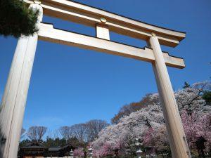 長野懸護国神社????情報 2021/04/06