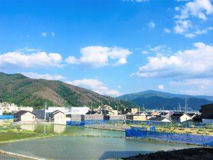 Jahreszeiten in Matsumoto: Der Monat Mai