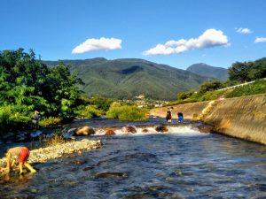 Swimming in Summer, Beauty Year-Round: Susukigawa Ryokuchi Park